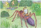 spider_surprise